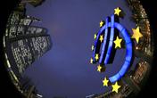 欧元区12月CPI跳升至1.1% 创三年新高