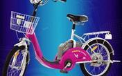 海南《电动自行车登记管理办法》上半年发布施行